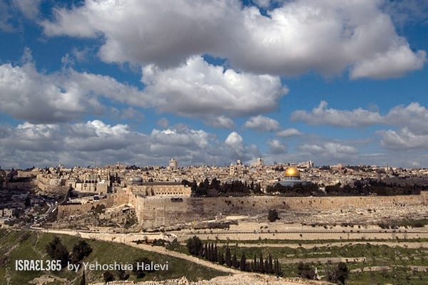 71 Bible Verses That Celebrate The Land of Israel