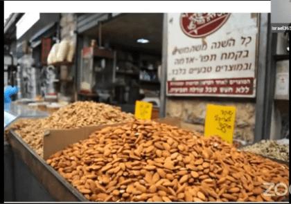 Almond-tree-tour-israel365
