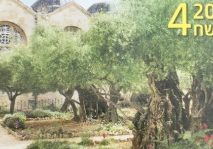 olive-tree-stamp-two