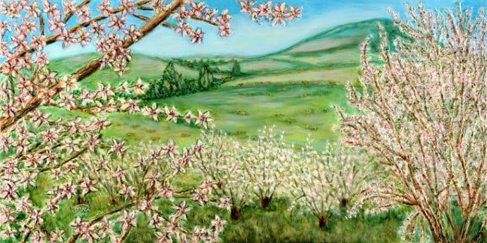 springtime-in-the-galil