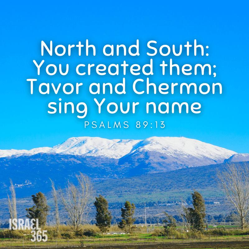 Tavor and Chermon