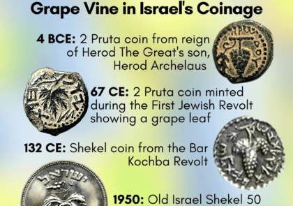 grape-on-israel-coins-throughout-history