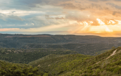 How Deuteronomy is the perfect introduction to living in the Land of Israel