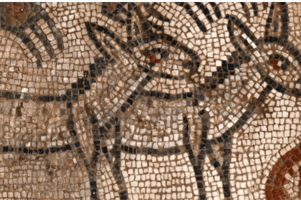 Mindblowing Archaeology in the Parsha of Noah