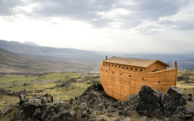 Did they just find Noah's Ark?