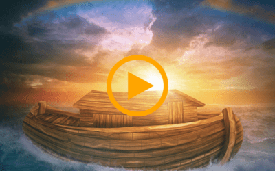 Life and Leadership Lessons from Noah's Ark
